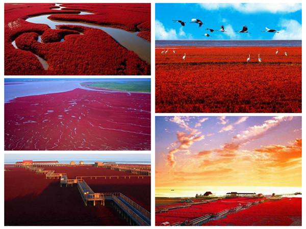 金秋9月,邂逅中国最漂亮的9个好地方!