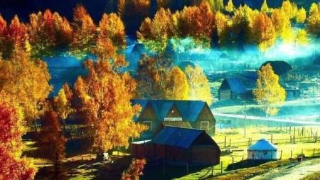 国内秋天最美的地方