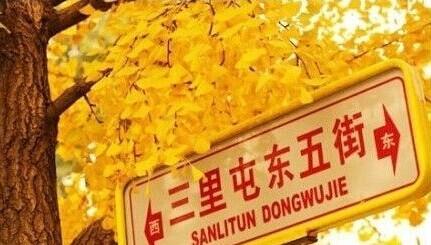 北京9个看银杏最美的地儿,挑一个离你近的走起!