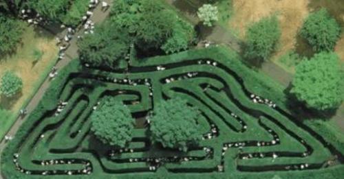 全球最复杂的迷宫有哪些?
