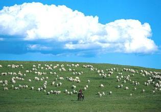 【蒙古简介】看完这个,你对蒙古国还陌生吗?
